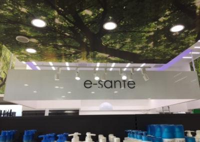 décoration murale plafond E-santé-bienvu.re